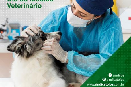 Parabéns médicos veterinários!